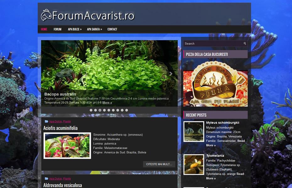 forumacvarist